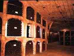 Private tours in Israel - Wine Tours