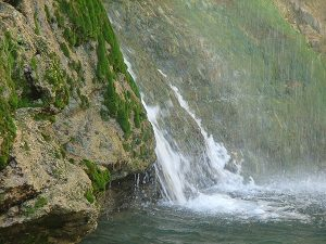 Ein Gedi - private tours in Israel