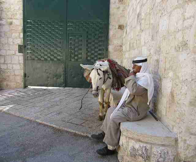 Cultural Encounters in Israel
