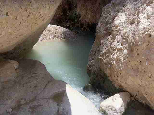 Favorite Freshwater Swimming Holes in Israel