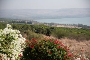 Visit the Galilee on your bar mitzvah tour in Israel